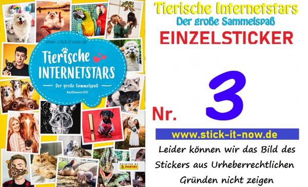 Tierische Internetstars (2021) - Nr. 3 (Glitzer)