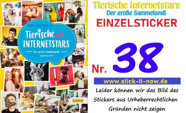 Tierische Internetstars (2021) - Nr. 38