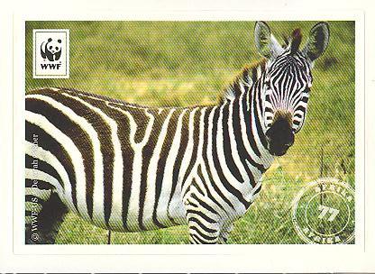 Edeka WWF Reisetagebuch 2012 - Nr. 77