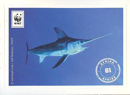 Edeka WWF Reisetagebuch 2012 - Nr. 81